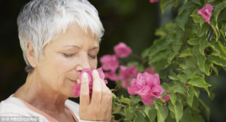 Woman-sense-of-smell